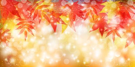 yellow orange: Maple foliage background
