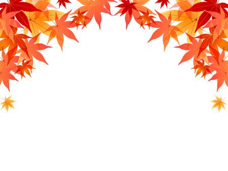 Maple Laub Hintergrund Standard-Bild - 42710707