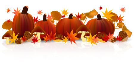 fall landscape: Halloween pumpkin maple Illustration