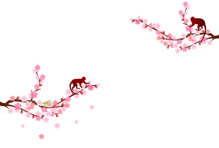 plum flower: Monkey plum greeting cards