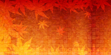 Maple autumn leaves background