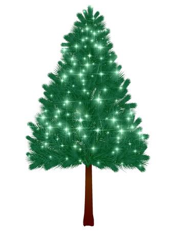 fir tree: Christmas tree fir tree background Illustration