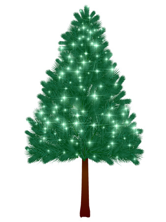 Weihnachtsbaum Tanne Hintergrund