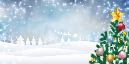 abeto: Trees of Christmas Santa fir