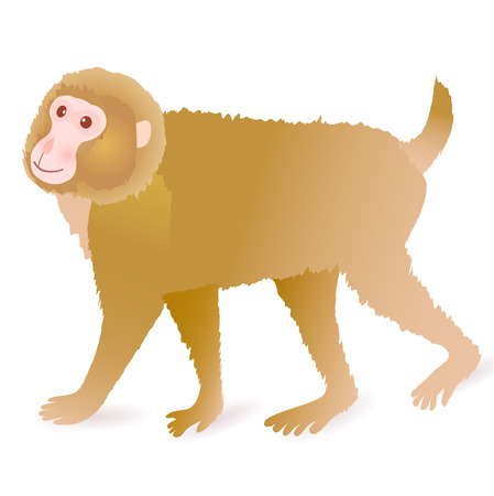 primate: Monkey cute greeting cards icon Illustration