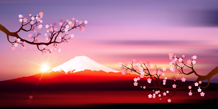 Fuji sunrise plum background 版權商用圖片 - 47887917
