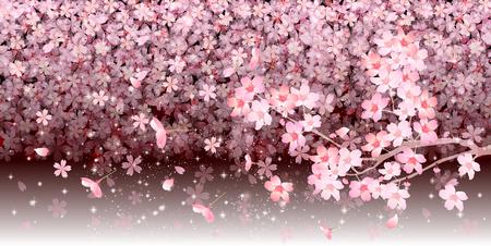 Spring cherry blossom background Illustration
