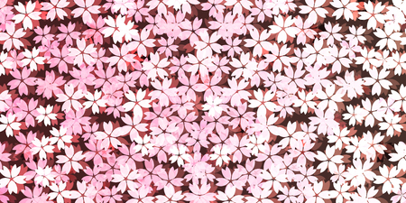 arbol de cerezo: Spring cherry blossom background Vectores