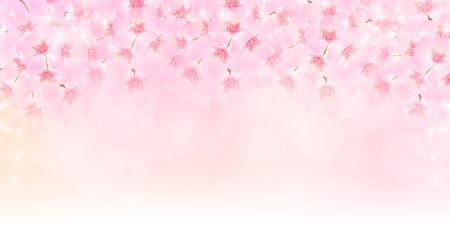 blossom background: Spring cherry blossom background Illustration