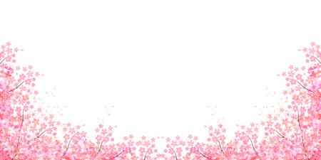 Frühling Kirsche-Blüte Hintergrund Standard-Bild - 49811013
