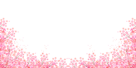 Spring cherry blossom background Stock Illustratie