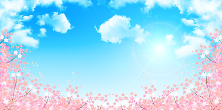 Frühling Kirsche-Blüte Hintergrund Standard-Bild - 49811029