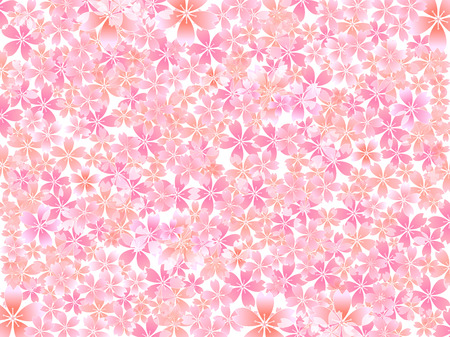 pink flower: Spring cherry blossom background Illustration