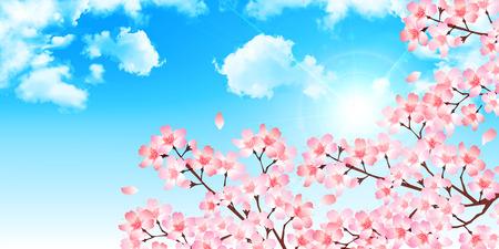 Spring cherry blossom background Ilustração
