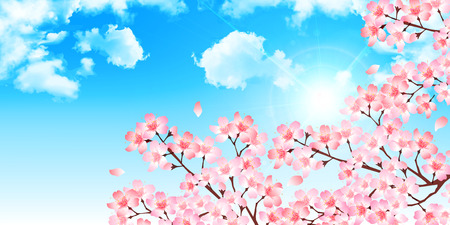 Spring cherry blossom background Illustration