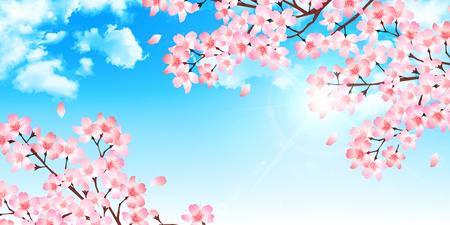 flower petals: Spring cherry blossom background Illustration