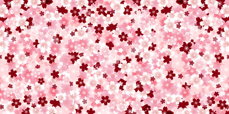 japanese pattern: Spring cherry blossom background Illustration