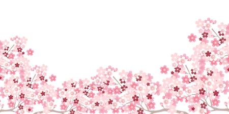 Spring cherry blossom background Stock Illustratie