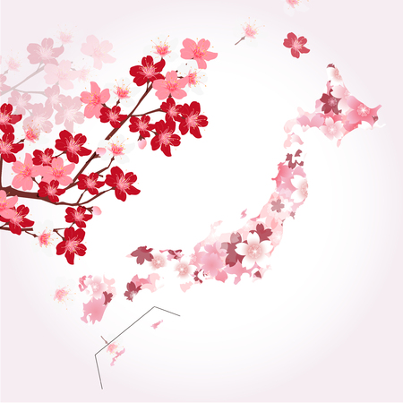 Cherry Japan map Spring background
