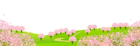 grasslands: Cherry spring flower background Illustration