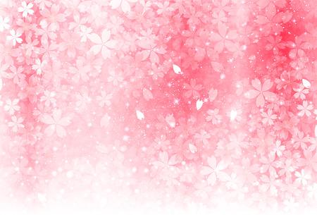 벚꽃 봄 꽃 배경