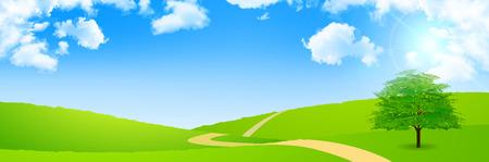 grasslands: Tree leaves fresh green background