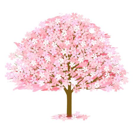 벚꽃 봄 꽃 아이콘 일러스트