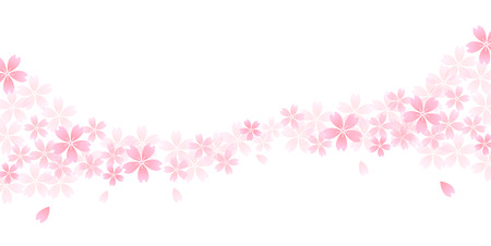 Cherry spring flower background  イラスト・ベクター素材