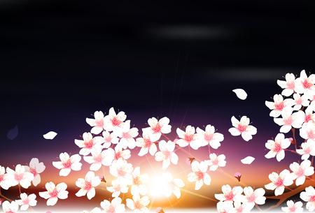 fleur de cerisier: Cerise fleur de printemps fond Illustration