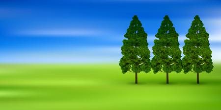 conifers: Pollen cedar tree background