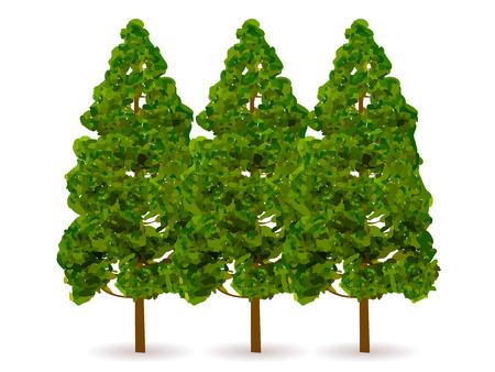 Cedar tree icon pollinique Vecteurs