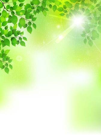 신선한 녹색 잎 나무 배경
