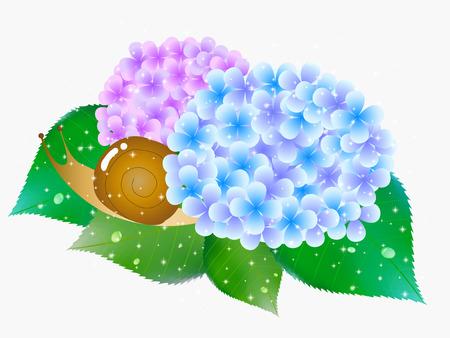the rainy season: Hydrangea rainy season flower icon