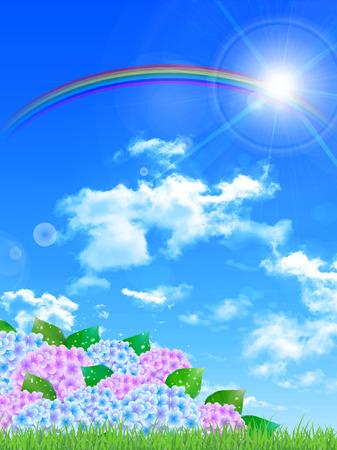绣球花雨季风景背景