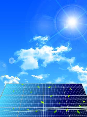 early summer: Solar fresh green sky background