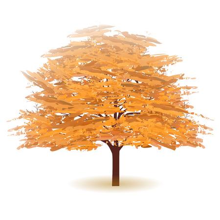 Autumn leaves chute icône arbre Vecteurs