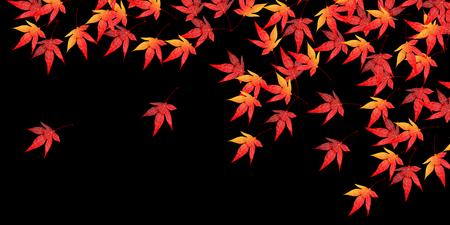 fall leaves: Fall autumn leaves landscape background Illustration