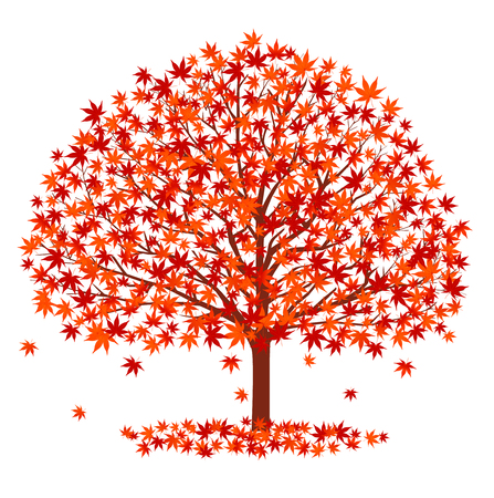 maple tree: Autumn leaves fall icon background Illustration
