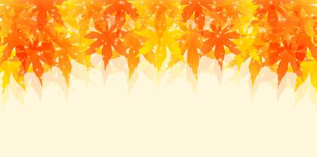 fall leaves: Autumn leaves fall leaf background