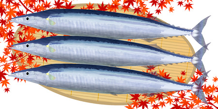 saury: Pacific saury fish autumn leaves background