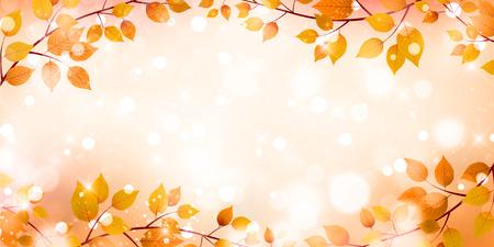 Autumn leaves autumn landscape background
