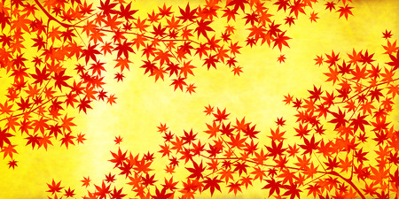japanese maple: Gold autumn leaves autumn background