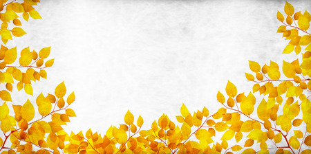 silver background: Silver colored leaves autumn background