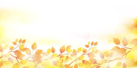 Herbstblätter Herbstlandschaft Hintergrund