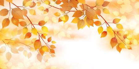Autumn leaves autumn landscape background 版權商用圖片 - 60443554