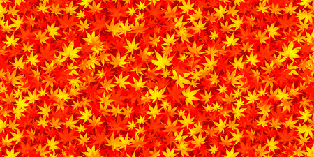 japanese maple: Autumn leaves autumn Japanese paper background