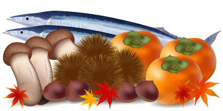 Pacific saury chestnut Matsutake persimmon Illustration