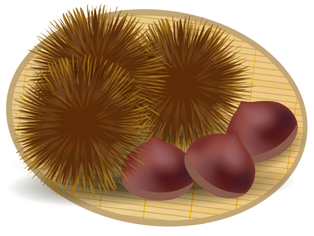 taste: Chestnut autumn taste icon Illustration