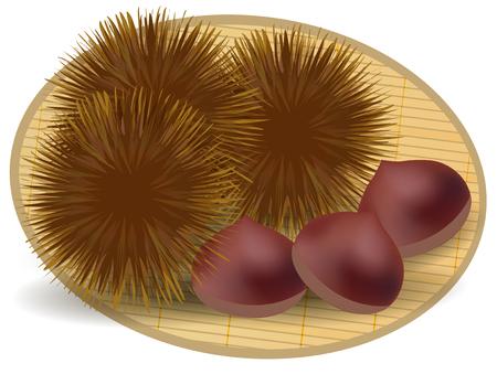 prime: Chestnut autumn taste icon Illustration
