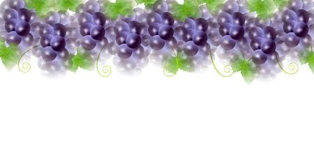 グレープ フルーツ秋背景  イラスト・ベクター素材